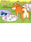 2018カレンダー 柴犬さんと楽しむ ニッポンの12ヵ月 壁掛