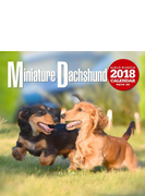 2018年大判カレンダー ミニチュア・ダックスフンド