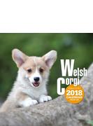 2018年大判カレンダー ウェルシュ・コーギー