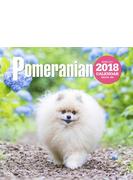 2018年大判カレンダー ポメラニアン