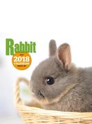 2018年大判カレンダー ウサギ