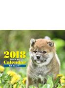 2018年ミニカレンダー 柴犬