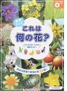 食育クイズこれは何の花? 身近な野菜や果物が全32種!