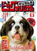 ビッグコミックオリジナル 2017年15号(2017年7月20日発売)