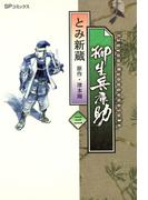 柳生兵庫助 (3)
