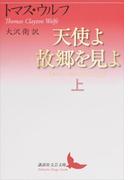 天使よ故郷を見よ 上(講談社文芸文庫)