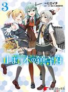 艦隊これくしょん -艦これ- 止まり木の鎮守府3(電撃コミックスNEXT)