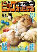 ビッグコミックオリジナル 2017年17号(2017年8月19日発売)