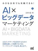 【期間限定価格】小さな会社でも実践できる!AI×ビッグデータマーケティング