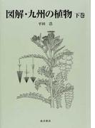 図解・九州の植物 下巻