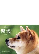 カレンダー '18 柴犬