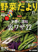 野菜だより 2017年 11月号 [雑誌]