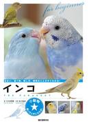 インコ(小動物★飼い方上手になれる!)