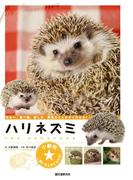 ハリネズミ(小動物★飼い方上手になれる!)