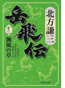 岳飛伝 12 飄風の章 (集英社文庫)(集英社文庫)