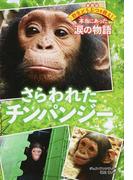さらわれたチンパンジー (愛蔵版野生どうぶつを救え!本当にあった涙の物語)