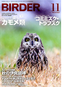 BIRDER (バーダー) 2017年 11月号 [雑誌]