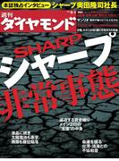 週刊ダイヤモンド 2012年9/1号 [雑誌]