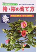 椿・桜の育て方 晩冬〜春を彩る花もの樹種