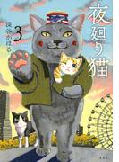 夜廻り猫 3 (ワイドKC)