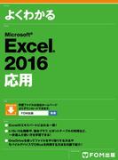 【期間限定価格】Excel 2016応用