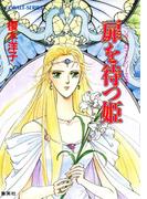 リダーロイス・シリーズ(3)扉を待つ姫(コバルト文庫)