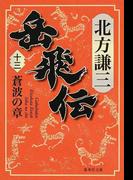 岳飛伝 13 蒼波の章 (集英社文庫)(集英社文庫)