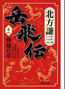 岳飛伝 十一 烽燧の章(集英社文庫)