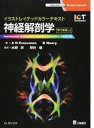 神経解剖学 イラストレイテッドカラーテキスト