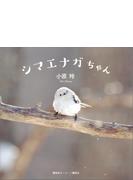 【期間限定価格】シマエナガちゃん