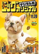 ビッグコミックオリジナル 2017年22号(2017年11月4日発売)