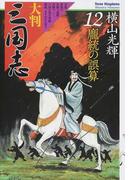 大判三国志 12 龐統の誤算(希望コミックス)