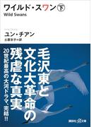ワイルド・スワン 下(講談社+α文庫)