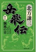 岳飛伝 十二 瓢風の章(集英社文庫)
