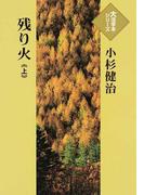 残り火 上 (大活字本シリーズ)