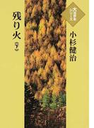 残り火 下 (大活字本シリーズ)