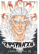 マテリアル・パズル(11)