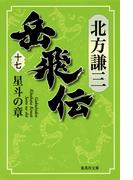 岳飛伝 17 星斗の章 (集英社文庫)