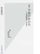 図解宇宙のかたち 「大規模構造」を読む (光文社新書)