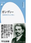 ガンディー 秘教思想が生んだ聖人 (平凡社新書)