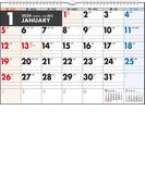 エコカレンダー壁掛 カレンダー 2020年 令和2年 A3  E15 2020年1月始まり