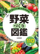 はじめての野菜づくり図鑑110種 育て方のコツと楽しみ方がわかる! 定番の野菜から人気の地方野菜も!
