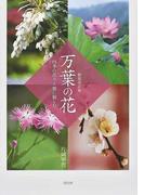 万葉の花 四季の花々と歌に親しむ 新装改訂版