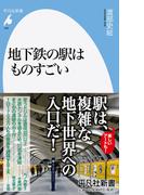 地下鉄の駅はものすごい (平凡社新書)
