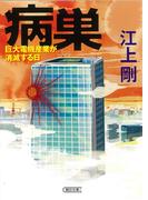 病巣 巨大電機産業が消滅する日 (朝日文庫)