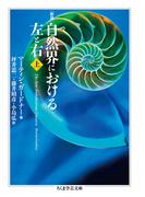 自然界における左と右 新版 上 (ちくま学芸文庫)