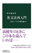 英文法再入門 10のハードルの飛び越え方 (中公新書)
