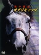 オグリキャップ 激闘の真実【DVD】