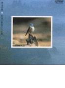野鳥の歌【CD】