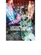 史上最強の移動遊園地 DREAMS COME TRUE WONDERLAND 2011 【通常盤】【DVD】 2枚組